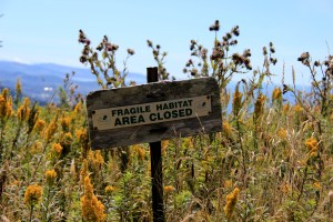 Fragile Habitat Area
